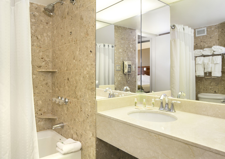 King Hearing Mobility Accessible Tub Nonsmoking of Holiday Inn Columbia East-Jessup